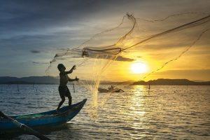 Blu economy: il futuro della pesca tra sostenibilità e filiera