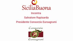 Siciliabuona incontra Salvatore Rapisarda, Presidente Consorzio Euroagrumi